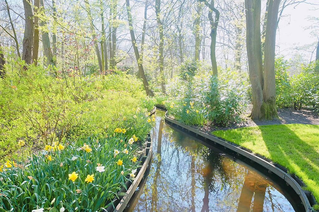 Mùa xuân đi thăm vườn hoa Keukenhof nổi tiếng ở Amsterdam 3 - Where my heart goes
