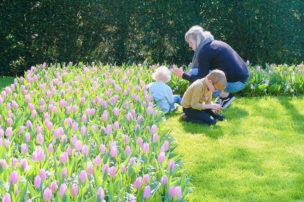 Mùa xuân đi thăm vườn hoa Keukenhof nổi tiếng ở Amsterdam 9 - Where my heart goes